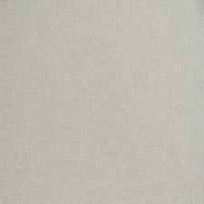 Aluminum Texture Plain Decorator Fabric by Trend