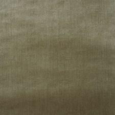 Lichen Decorator Fabric by Schumacher