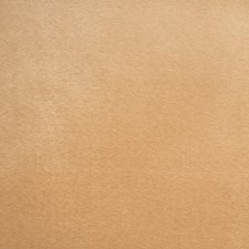 Fresh Gold Solid Decorator Fabric by Trend