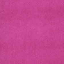 Bonbon Solid Decorator Fabric by Trend