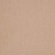 Blush Global Decorator Fabric by Trend