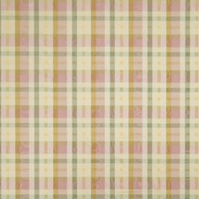 Sorbet Check Decorator Fabric by Trend