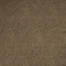 Canteen Solid Decorator Fabric by Trend