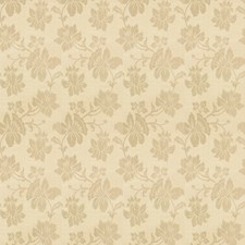 Parchment Floral Decorator Fabric by Trend