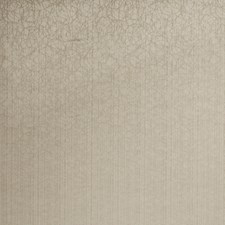 Linen Contemporary Decorator Fabric by Trend