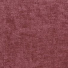 Berry Solid Decorator Fabric by Stroheim