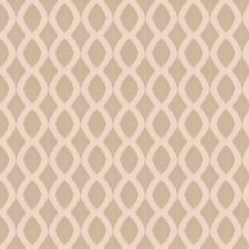 Stone Contemporary Decorator Fabric by Trend