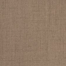 Stucco Solid Decorator Fabric by Trend
