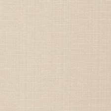 Bone Texture Plain Decorator Fabric by Trend