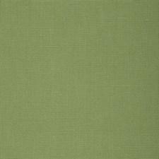 Ivy Decorator Fabric by Schumacher