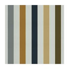 Grey/Nl Stripes Decorator Fabric by Brunschwig & Fils