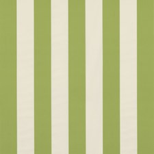 Leaf Stripes Decorator Fabric by Brunschwig & Fils