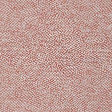 Coral Small Scale Woven Decorator Fabric by Stroheim