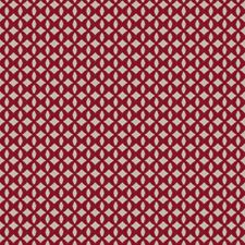 Ruby Embroidery Decorator Fabric by Stroheim