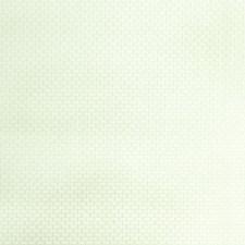 Plastic Texture Plain Decorator Fabric by S. Harris