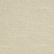 Champagne Texture Plain Decorator Fabric by Trend