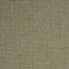 Lichen Texture Plain Decorator Fabric by Fabricut