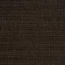 Coffee Bean Texture Plain Decorator Fabric by Fabricut