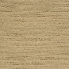 Raffia Texture Plain Decorator Fabric by Trend