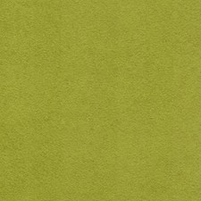 Kiwi Solid Decorator Fabric by Greenhouse