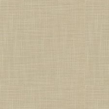Beige Solid Decorator Fabric by Kravet
