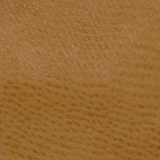Phoenix Ochre Decorator Fabric by Greenhouse