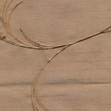 Nutshell Decorator Fabric by RM Coco