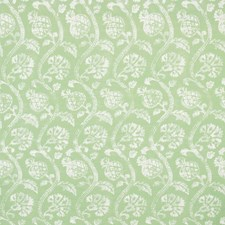 Shamrock Botanical Decorator Fabric by Kravet
