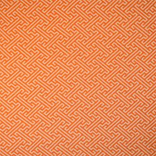 Mango Decorator Fabric by Silver State