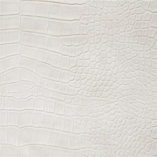 White Animal Skins Decorator Fabric by Kravet
