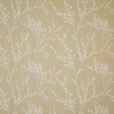 Sandstone Damask Decorator Fabric by Pindler