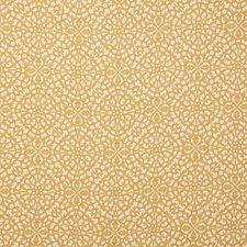 Arena Damask Decorator Fabric by Pindler