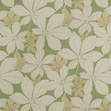 Linden Decorator Fabric by Kasmir