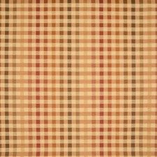 Vegetable Plaid Check Decorator Fabric by Greenhouse
