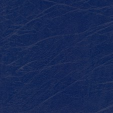 Aries Midnight Decorator Fabric by Greenhouse