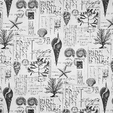 Blacktan Novelty Decorator Fabric by Greenhouse