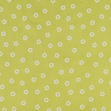Lime Jello Decorator Fabric by Scalamandre