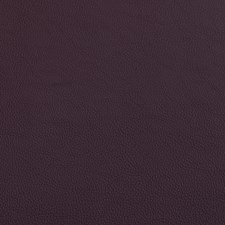 Eggplant Decorator Fabric by Silver State