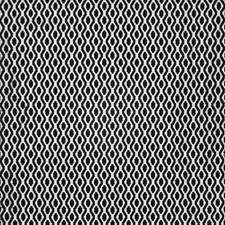 Pongo Decorator Fabric by Maxwell
