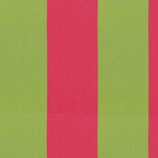 Preppy Decorator Fabric by Kasmir