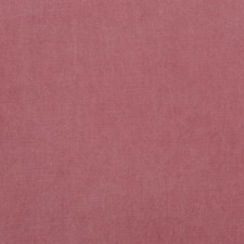 Soft Pink Solids Decorator Fabric by G P & J Baker