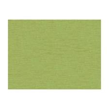 Aloe Velvet Decorator Fabric by Brunschwig & Fils