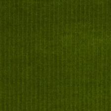 Kale Decorator Fabric by Robert Allen