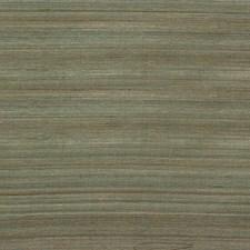 Algae Stripes Decorator Fabric by Parkertex