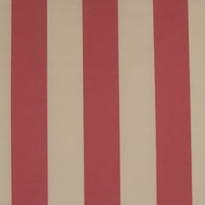 Pink Decorator Fabric by Kasmir