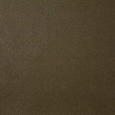 Bark Decorator Fabric by Pindler