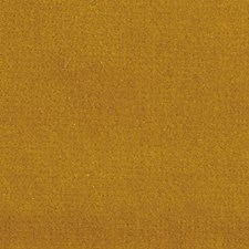 Poupon Decorator Fabric by Scalamandre