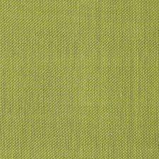 Kiwi Decorator Fabric by Scalamandre