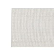 Tape Braid Ivory Trim by Pindler