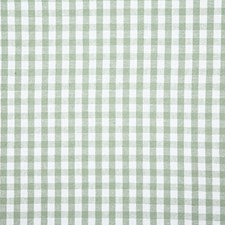 Fern Check Decorator Fabric by Pindler